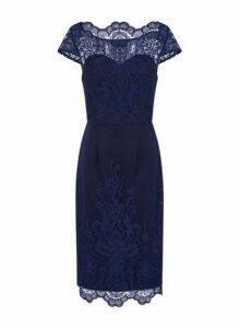Womens *Chi Chi London Navy Embroidered Bodycon Dress- Blue, Blue