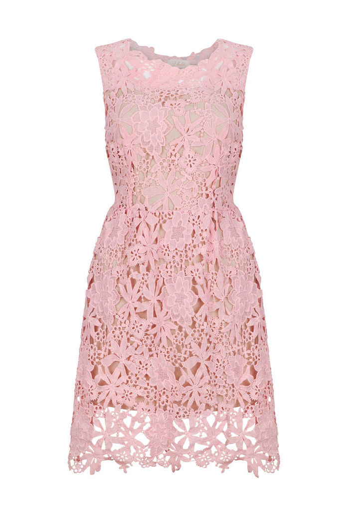 Ukulele Ava Dress