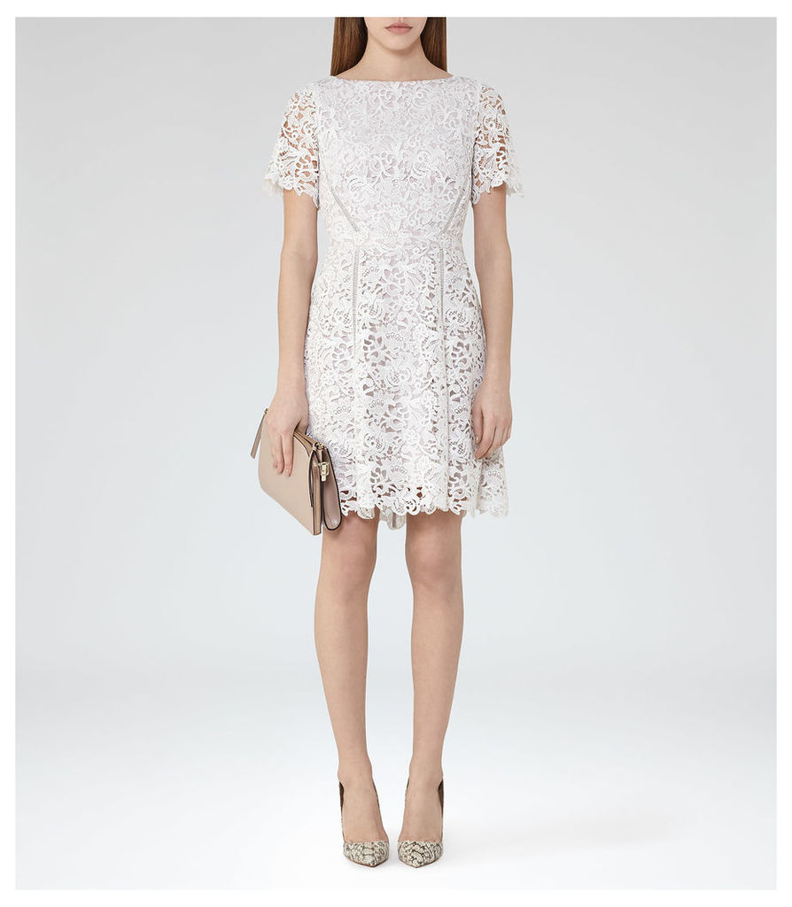 f3c5f6f7 Reiss Eleania - Lace Fit And Flare Dress in Off White/Ash, Womens ...