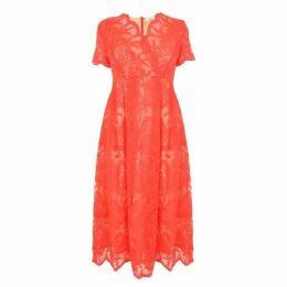 Darling Rosalia Flared Dress