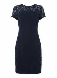 Womens *Roman Originals Navy Sequin Lace Dress- Navy, Navy