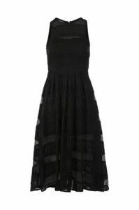 Sheer Lace Stripe Dress