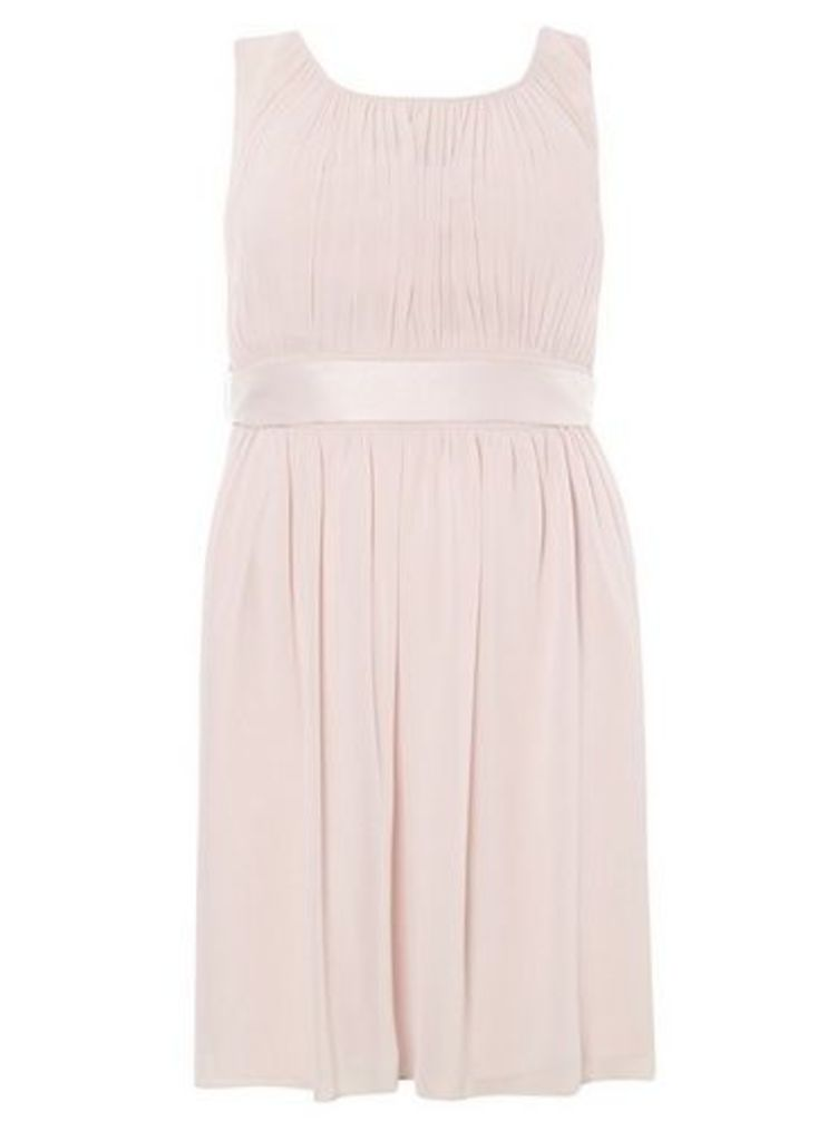 Womens **Showcase Bridesmaids Curve Pink 'Beth' Skater Dress- Pink, Pink