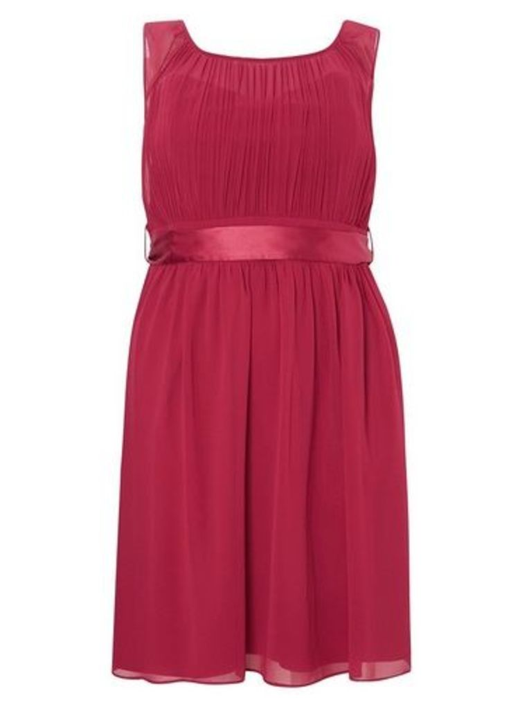 Womens **Showcase Curve Berry Beth Skater Dress- Red, Red