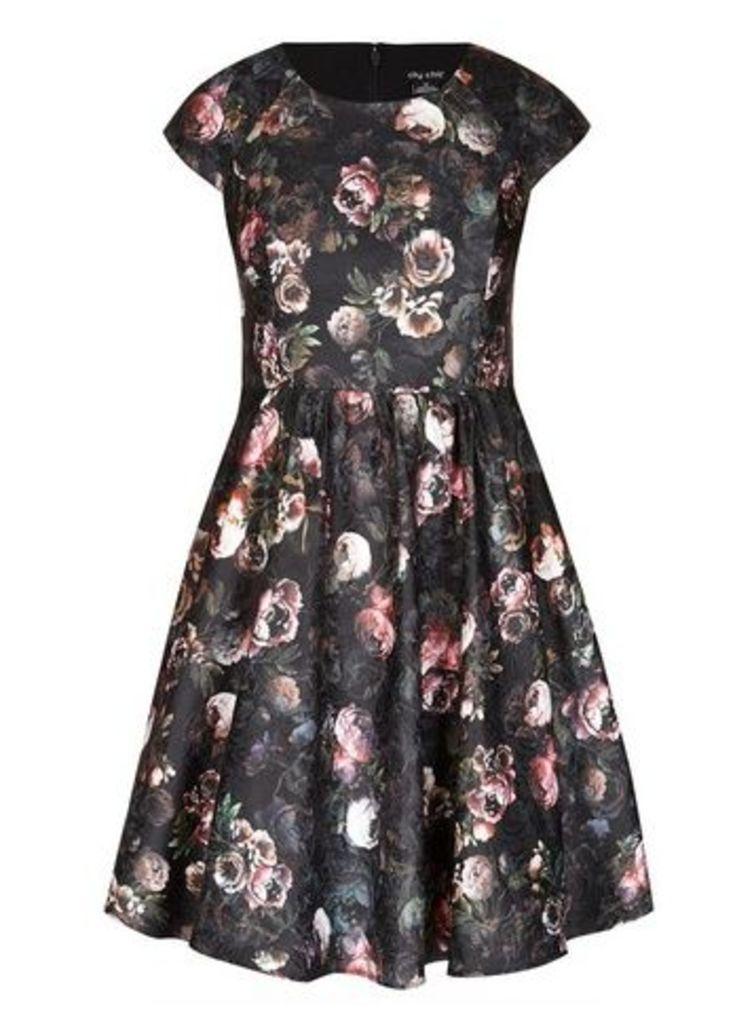 **City Chic Black Vintage Look Skater Dress, Others