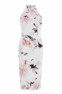 Quiz Cream And Pink Floral Mesh Midi Dress