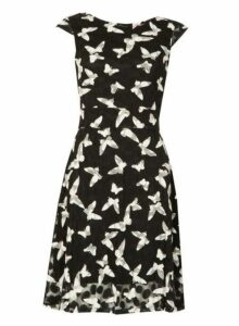 Womens *Izabel London Multi Coloured Butterfly Print Tea Dress- Multi Colour, Multi Colour