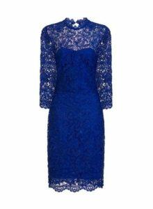 Womens **Paper Dolls Cobalt High Neck Lace Bodycon Dress- Cobalt, Cobalt