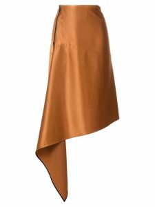 Petar Petrov asymmetric A-line skirt - Brown