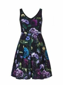 **City Chic Multicoloured Floral Print Skater Dress, Assorted