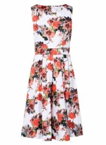 Womens *Izabel London Multi Colour Fit And Flare Dress- Multi Colour, Multi Colour