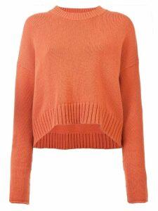 Proenza Schouler Wool Cashmere Crewneck Sweater - Pink