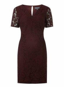 Womens **Tall Berry Lace Shift Dress- Red, Red