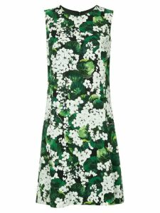 Dolce & Gabbana white geranium printed cady dress - Green