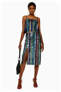 Womens Petite Sequin Stripe Midi Skirt - Multi, Multi