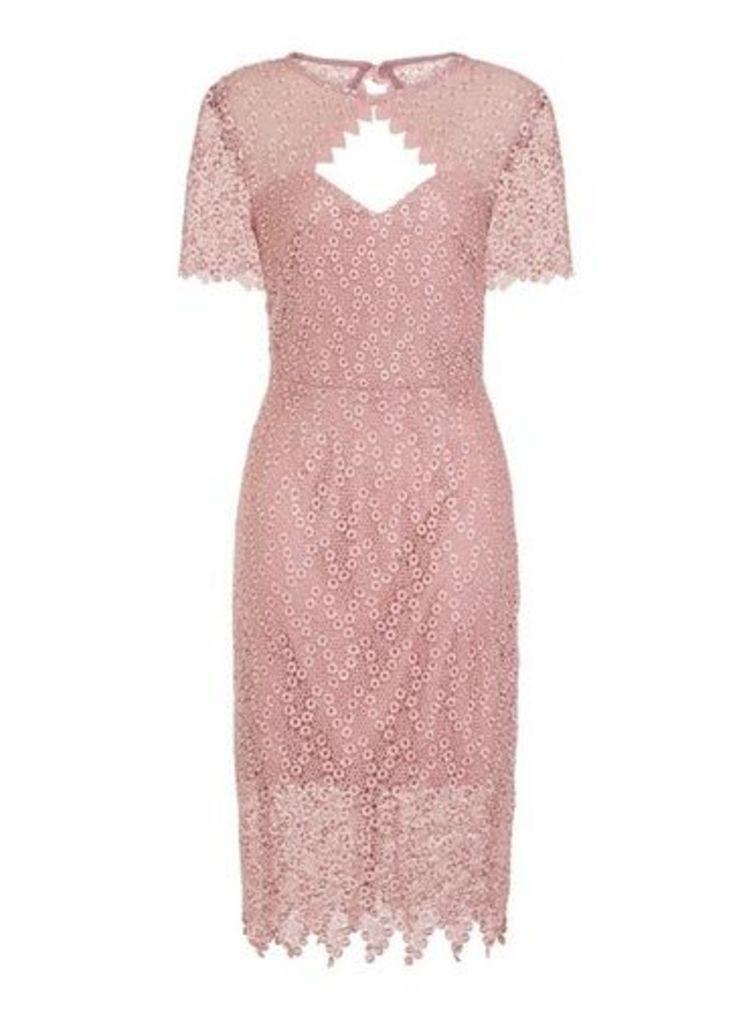 Womens **Paper Dolls Blush Cut Out Midi Bodycon Dress- Pink, Pink