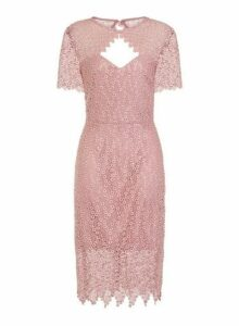 Womens **Paper Dolls Blush Cut Out Midi Bodycon Dress- Pink, Pink