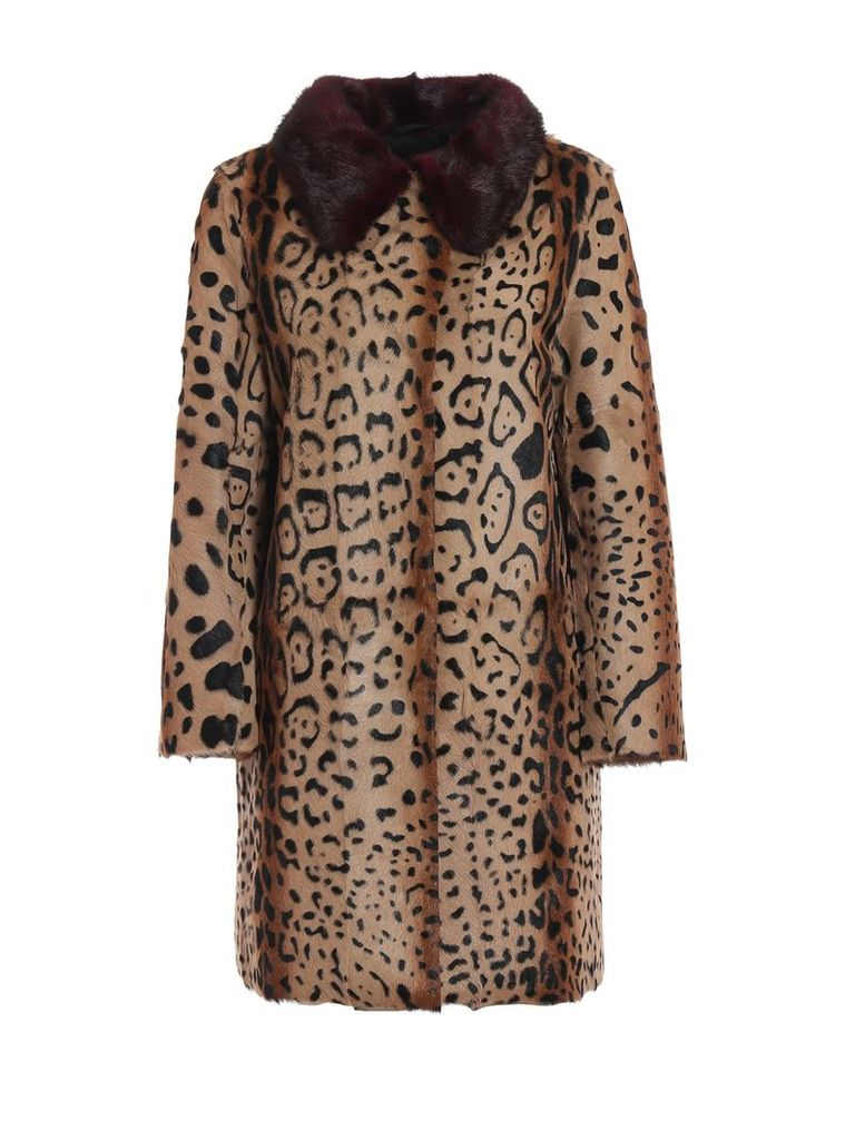 Sword Leopard Print Detail Coat