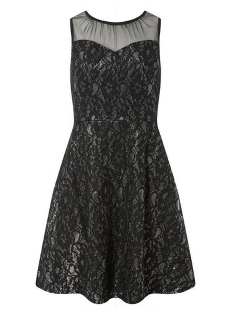 Womens **Black And Silver Shimmer Lace Skater Dress- Multi Colour, Multi Colour