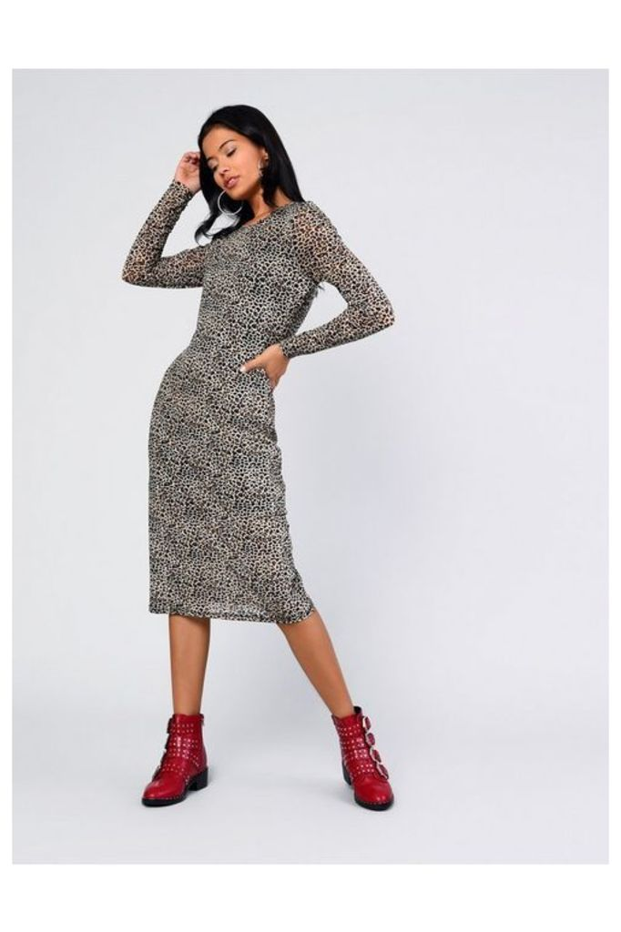 Womens **Animal Printed Midi Dress By Glamorous - Multi, Multi