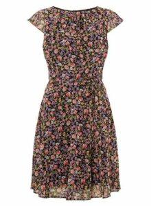 Womens **Billie & Blossom Multi Coloured Chiffon Skater Dress- Black, Black