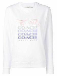 Coach Shadow Rexy sweater - White