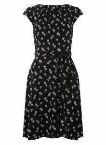 Womens **Billie & Blossom Tall Black Balloon Print Skater Dress- Black, Black