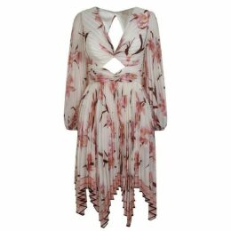 Zimmermann Corsage Mini Dress