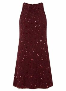Womens **Showcase Mulberry Embellished Trapeze Dress- Red, Red