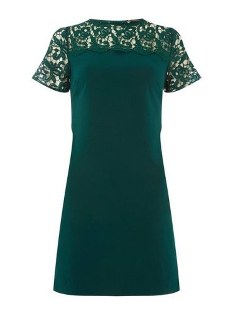 Womens **Green Lace Mix Shift Dress- Green, Green