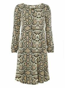 Womens **Billie & Blossom Multi Colour Tall Neutral Snake Print Skater Dress- Black, Black