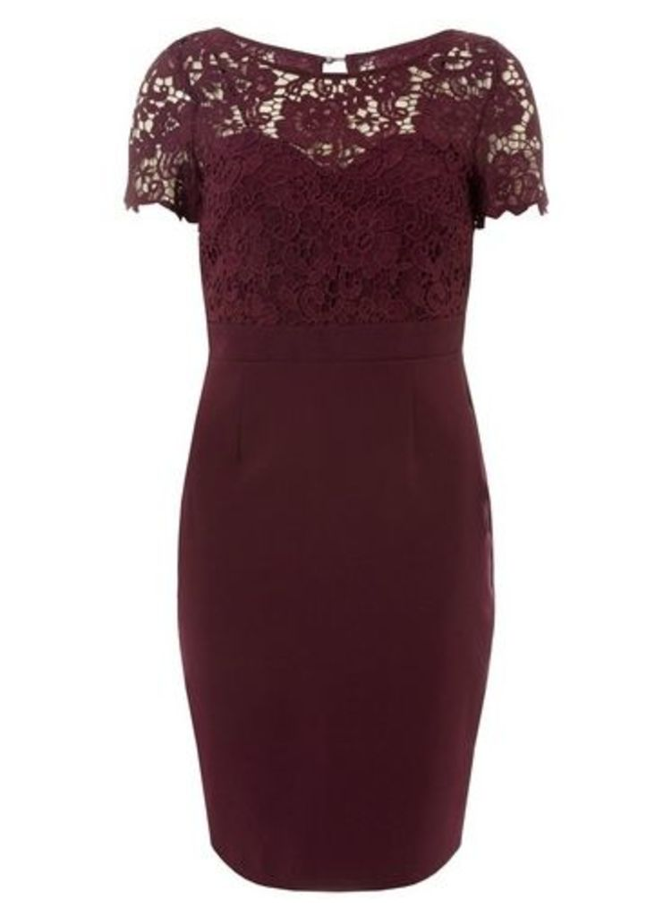 Womens **Showcase Mulberry 'Louella' Lace Bodycon Dres- Red, Red