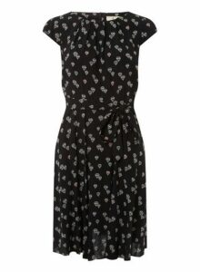 Womens **Billie & Blossom Petite Black Balloon Print Skater Dress- Black, Black
