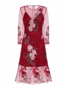 Womens *Chi Chi London Embroidered Skater Dress- Burgundy, Burgundy
