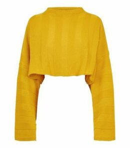Cameo Rose Mustard Stripe Cropped Jumper New Look