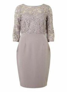 Womens **Showcase Mink 'Darcy' Lace Bodycon Dress- Mink, Mink
