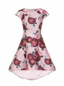 **Chi Chi London Mink Floral Dim Hem Skater Dress, Mink