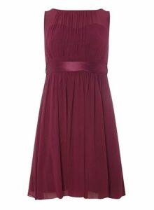 Womens **Showcase Petite Mulberry 'Beth' Midi Dress- Red, Red