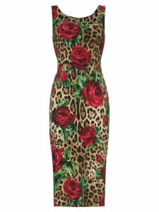 Dolce & Gabbana leopard rose print bodycon midi dress - Brown