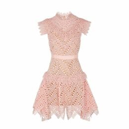 Self-Portrait Abstract Blush Guipure Lace Dress