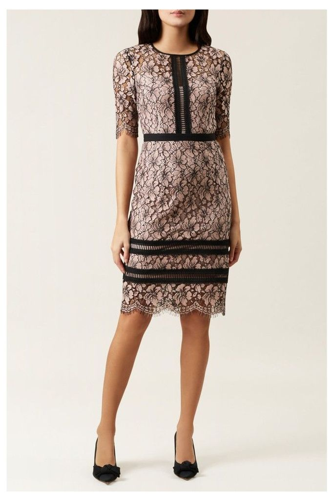 Womens Hobbs Pink Penny Dress -  Pink