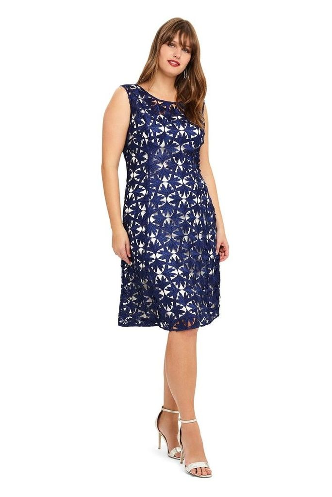 Womens Studio 8 Blue Lilah Lace Dress -  Blue