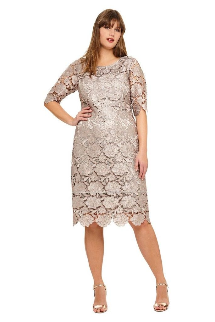 Womens Studio 8 Rosalind Lace Dress -  Silver
