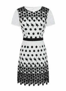 Womens *Chi Chi London White Lace Bodycon Dress- White, White