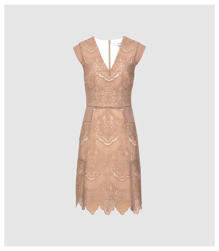 Reiss Gemina - Lace Fit And Flare Dress in Nude, Womens, Size 16