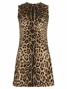 Dolce & Gabbana leopard print classic shift mini dress - Brown