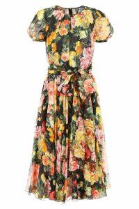 Dolce & Gabbana Floral-prnted Dress