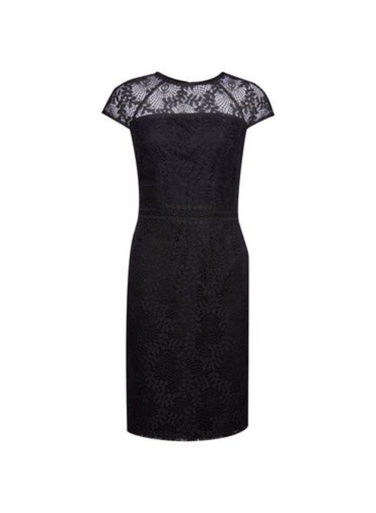 Womens Black Lace Trim Short Sleeve Pencil Dress- Black, Black