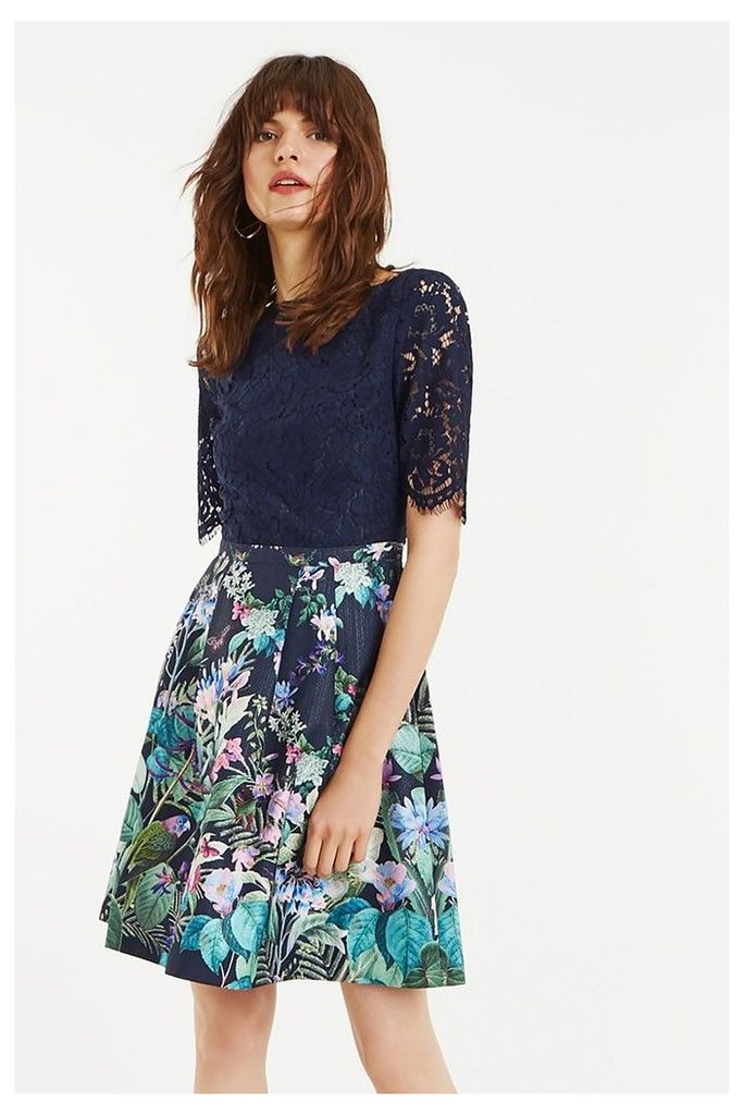 Womens Oasis Blue Lace Top Bloom Skater Dress -  Blue