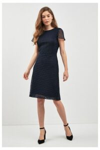 Womens Lauren Ralph Lauren Lyonia Lace Dress -  Blue